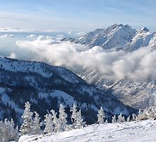 Winter mountains view from summit of Snowbird, Utah by Anton Oparin