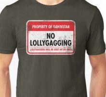 Dawnstar Municipal Ordinance Unisex T-Shirt