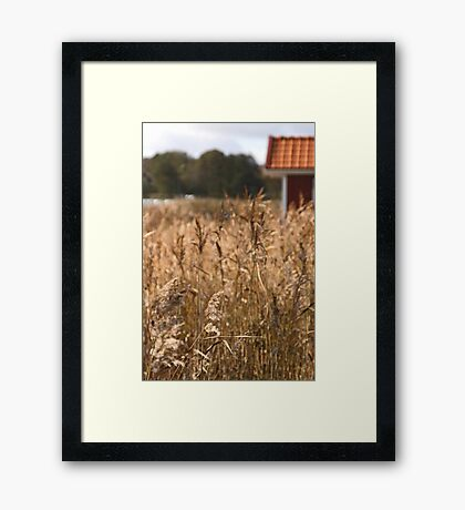 South Koster Island Framed Print