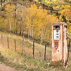 Conoco Gas Pump by Candy Gemmill