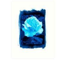 Rose in blue Art Print