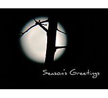 Seasons Greetings - Greeting Card 5 Photographic Print
