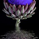 Purple Reflection - Flowering Artichoke by Hans Kawitzki