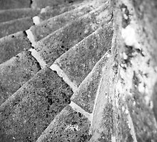 Winding Steps by Gillian Cross