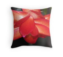 Christmas Cactus in bloom Throw Pillow