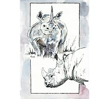 Rhino Study - The Unpardonable Crime Photographic Print
