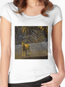 Abstract foal in gold and black Women's Fitted Scoop T-Shirt