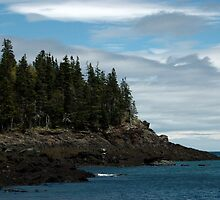 Rocky Coast, Herring Cove, Campobello Island, New Brunswick, Canada by shugli