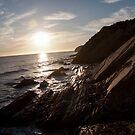 Gaviota Beach  by Renee D. Miranda