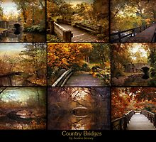 Country Bridges by Jessica Jenney