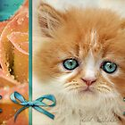 Raindrops on Roses and Whiskers on Kittens by micklyn