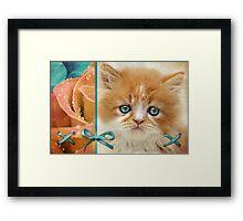 Raindrops on Roses and Whiskers on Kittens Framed Print