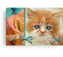 Raindrops on Roses and Whiskers on Kittens Canvas Print