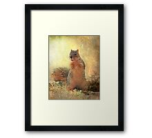 """ Got Peanuts ?"" Framed Print"