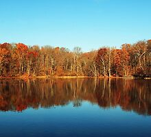 autumns reflection by kathy s gillentine