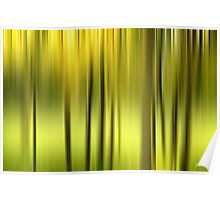 Northern Forest Abstract Poster
