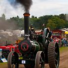 Ruston Proctor Traction Engine by Aggpup