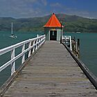 Akaroa Pier by Mark Bird