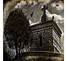 Raven's Roost Photographic Print