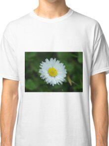 Macro Daisy Classic T-Shirt