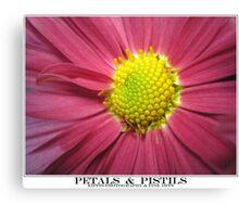 petals & pistils Canvas Print