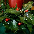 The Holly and The Berries by David DeWitt