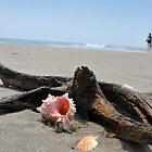 Seashell on the sand and ocean wih driftwood by Anton Oparin