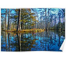 Cypress Gardens in the Fall Poster