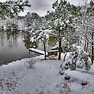 A Snowy Day On The Pond by Jeff Ore