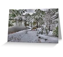 A Snowy Day On The Pond Greeting Card