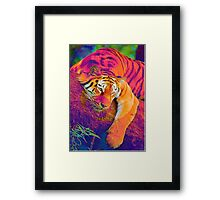 Beautiful Vibrant Abstract Tiger  Framed Print