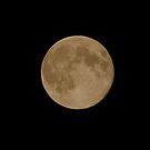 The Harvest Moon by SAJONES