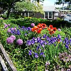 Flowers at Perkins Cove, Ogunquit Maine by RoyceRocks