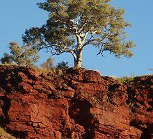 Karijini National Park, Western Australia by Dan & Emma Monceaux