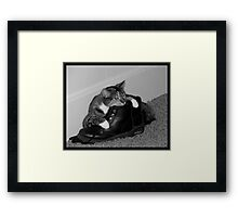 Long Day's work..time to relax on mom's boots~!!! Framed Print
