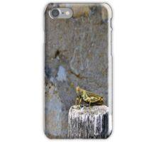 Grasshopper iphone case iPhone Case/Skin