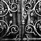 doors by theStalker