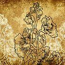 Alcea by Barbara Glatzeder