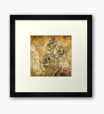 Alcea Framed Print