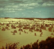 The Pinnacles, Cervantes, Western Australia #5 by Elaine Teague
