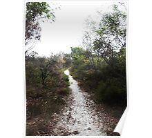 Sandy Path Poster