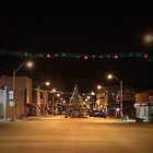 There's a Tree in the Middle of the Road ~Small Town America by Rachel Sonnenschein