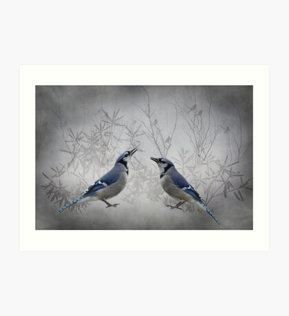Two Jays Art Print