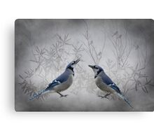 Two Jays Canvas Print
