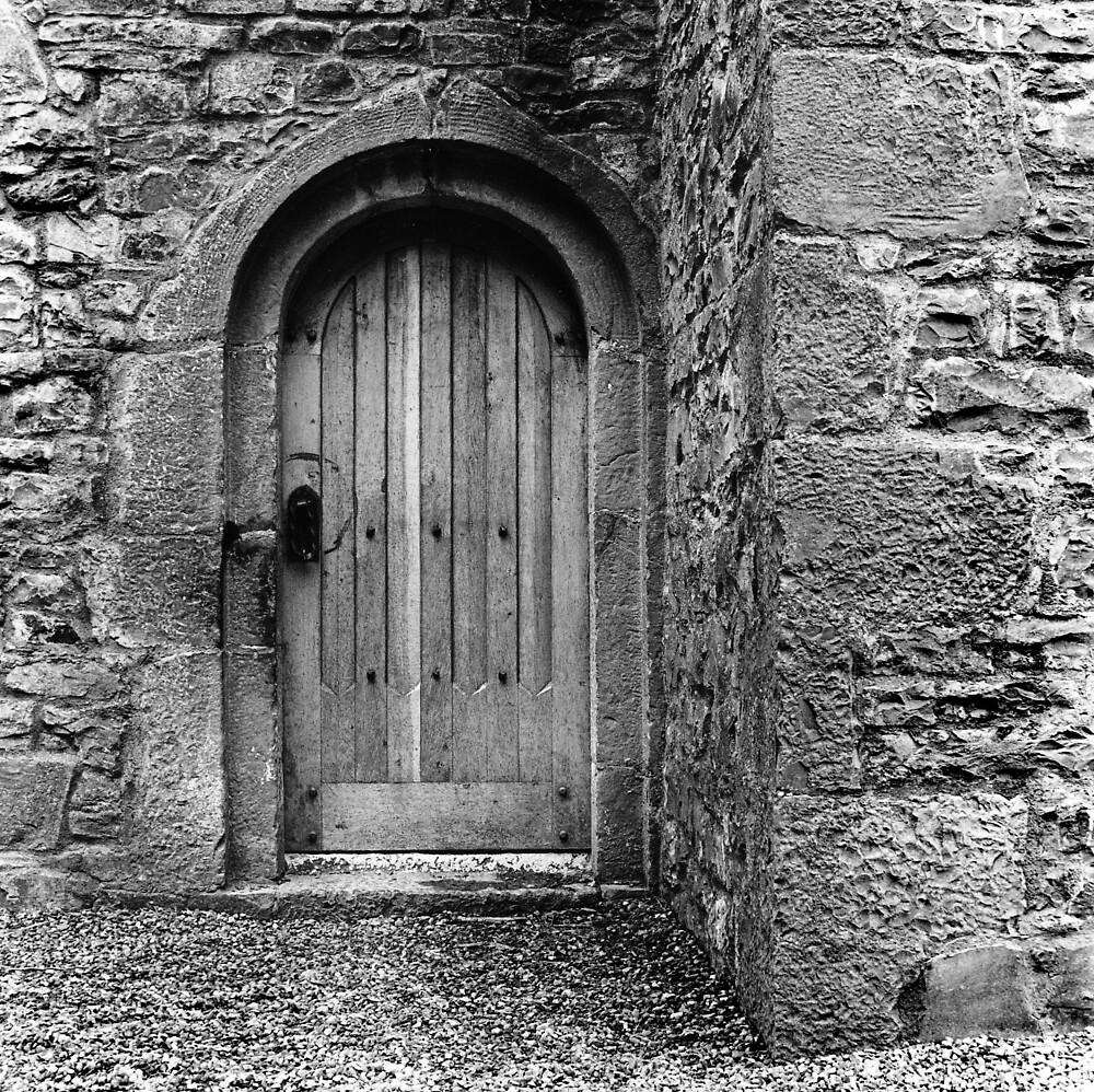 Ashtown Castle Door, Dublin, Ireland by Dave  Kennedy