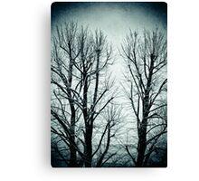 Winter trees II Canvas Print