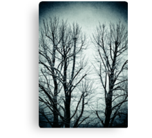 Winter trees II Canvas Print