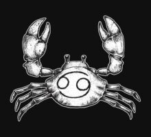 Cancer The Crab by beanarts