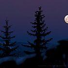 Silent Moon - Aspen, Colorado by mikenyff