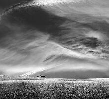 Land of Free Souls by ambiaso